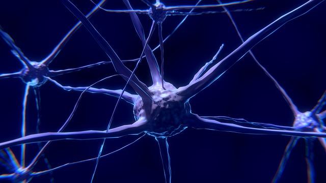 imagen sobre la comunicación neuronal, los mecanismos de la transmisión sináptica